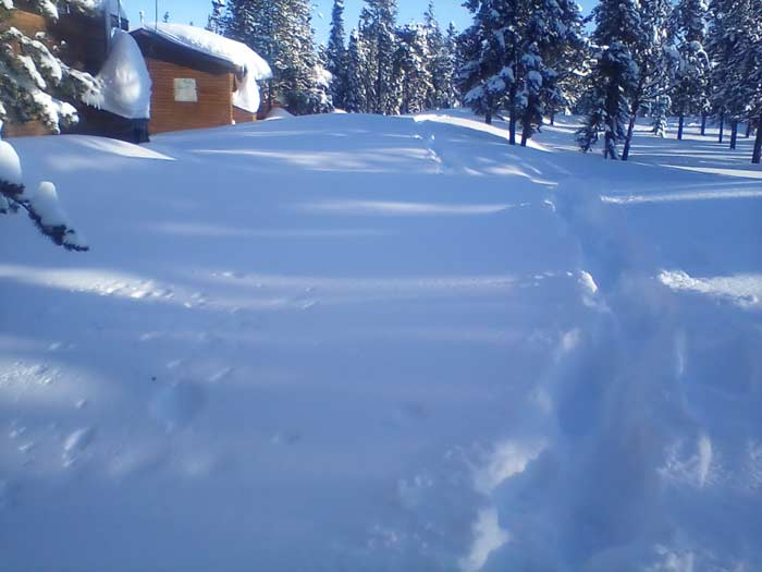 Snow at nsrl April