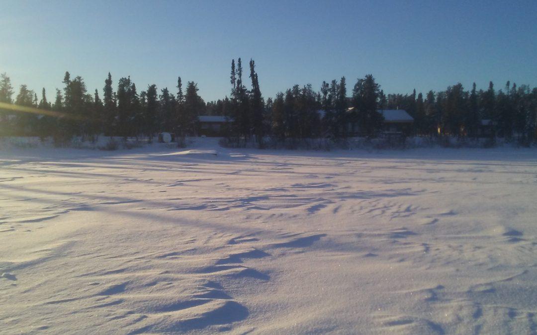 Tales of a Winterman – December 31, 2020